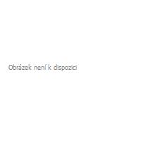 FiskalPRO ORANGE 4G - prenájom zariadenia